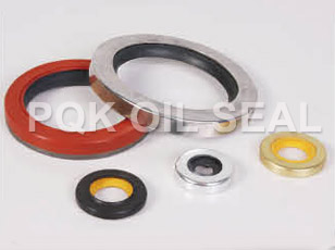 PTFE Oil Seal