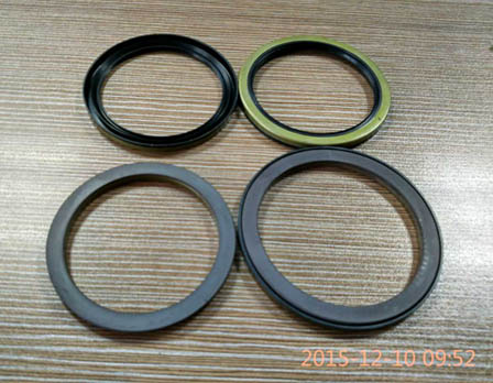 ABS magnetic seals